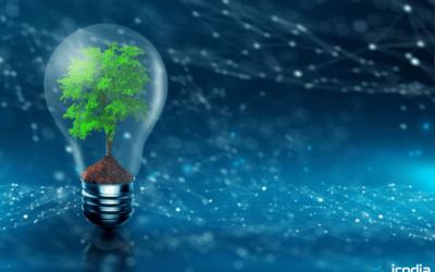 Nos engagements pour réduire notre impact environnemental